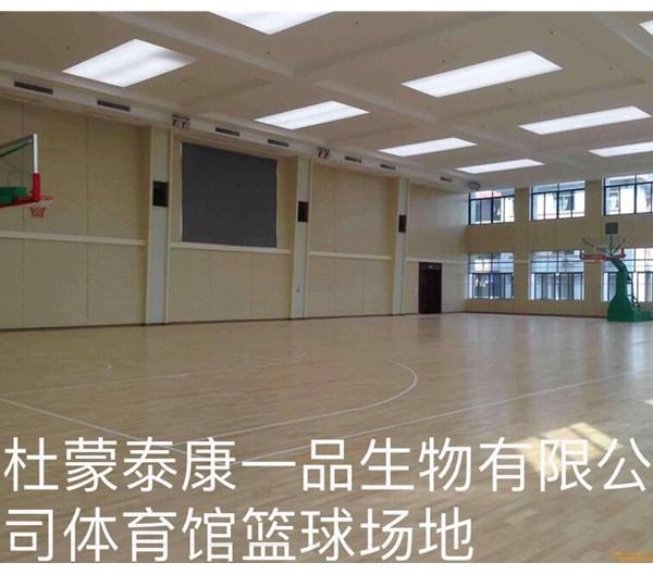 体育馆篮球场地