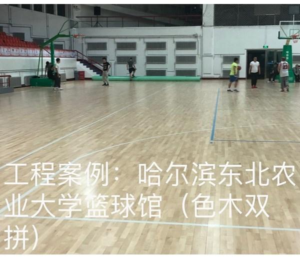 哈尔滨东北农业大学篮球馆