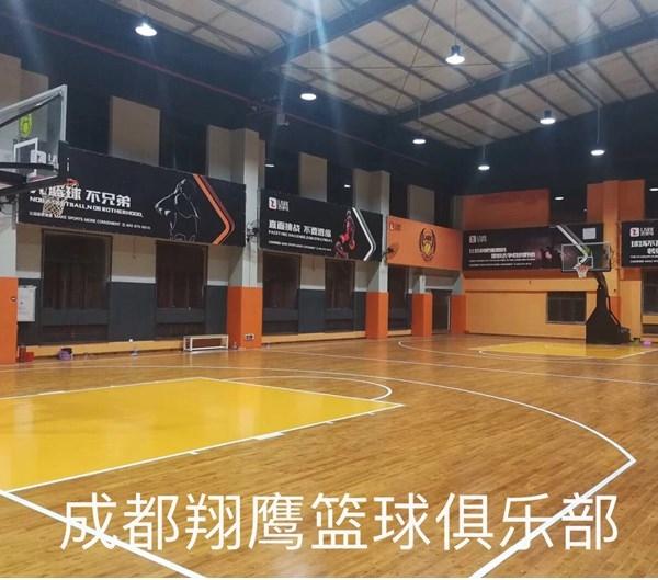 成都翔鹰篮球俱乐部