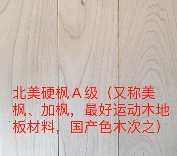 运动木地板公司